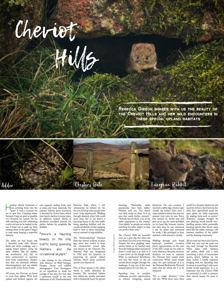 New Nature magazine