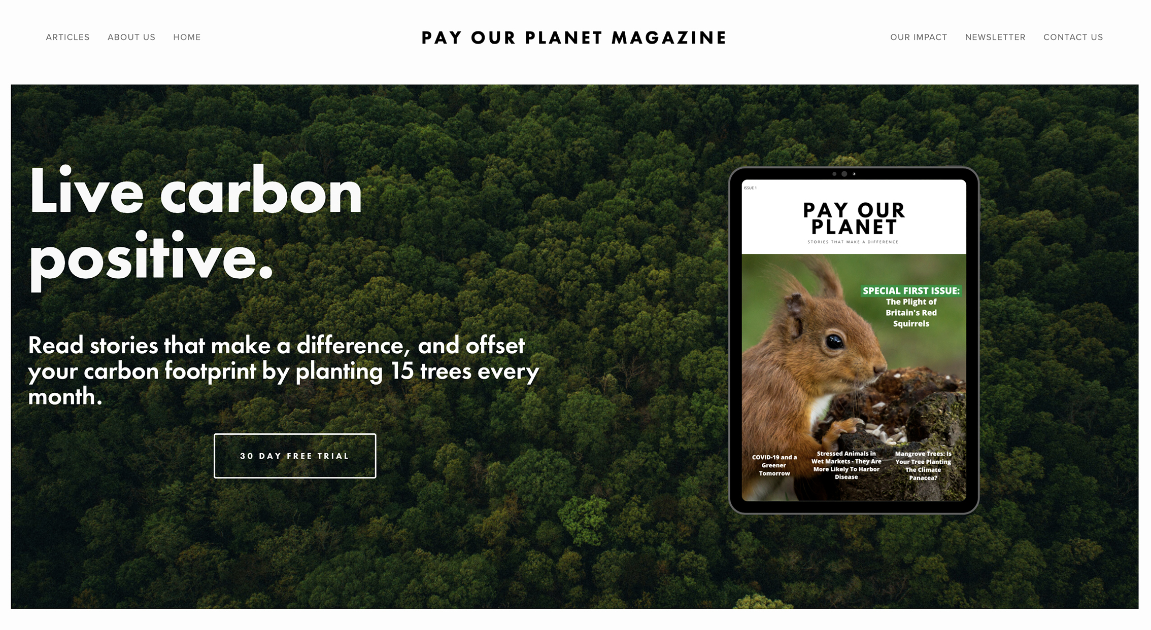 2020 11) Pay Our Planet
